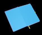 spiegelblad lichtblauw